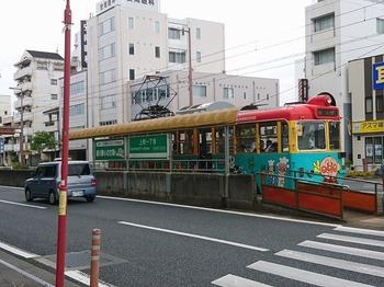 DSC_2542.jpg